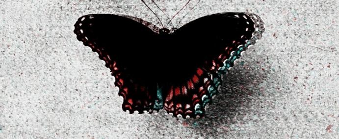 "Poem ""Breathe Again"" by Nicole Heinz"